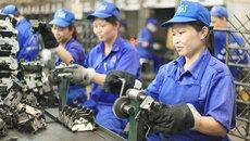 Doanh nghiệp có được tự ý chấm dứt hợp đồng với công nhân?