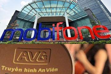 Cổ đông AVG hoàn chuyển 2.500 tỷ cho MobiFone