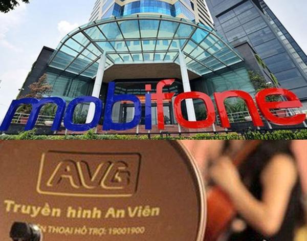 Thanh tra Chính phủ công bố kết luận thương vụ MobiFone mua AVG