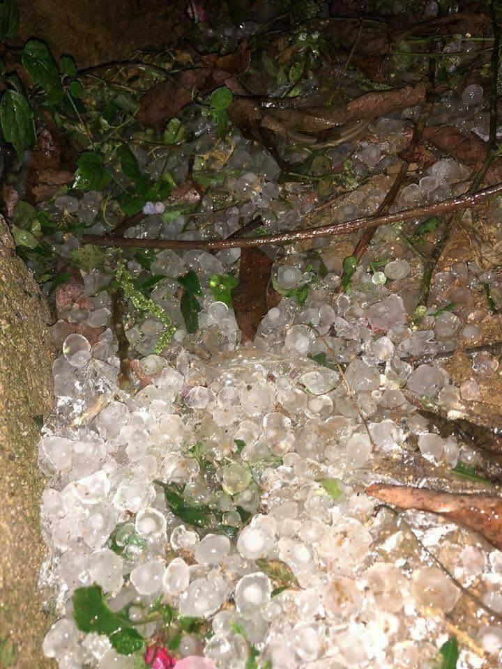 Mưa đá rơi trắng xóa ở Mộc Châu