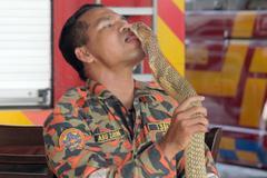 Lính cứu hỏa hôn rắn bị rắn cắn chết