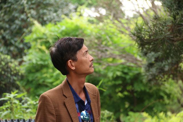 """Cận cảnh vườn tùng cổ thụ trăm tuổi """"độc nhất, vô nhị"""" ở Hà Nội"""