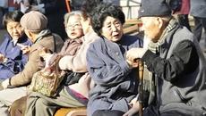 Kỳ lạ người già ở Nhật cố tình phạm tội để ngồi tù
