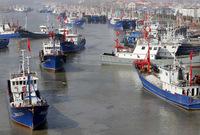 Hợp tác nghề cá ở Biển Đông: Ai hủy diệt các rạn san hô, làm cạn kiệt nguồn cá?