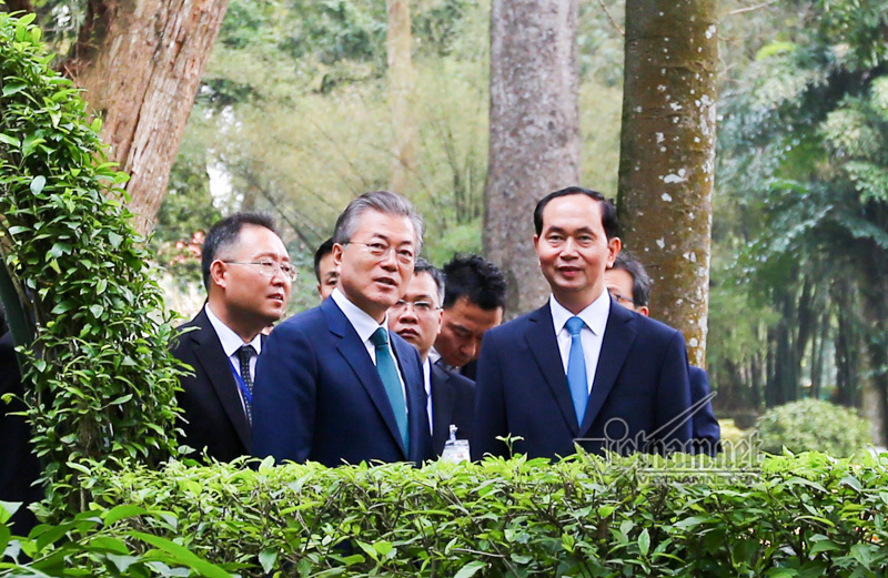 Tổng thống Hàn Quốc cho cá ăn tại khu nhà sàn Bác Hồ
