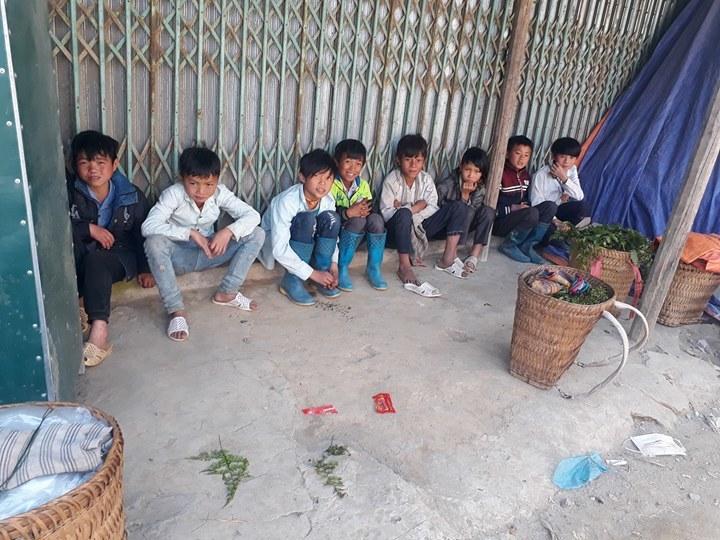 Rỉ tai nhau 'rau trường sinh', thương lái Trung Quốc đổ xô mua vét