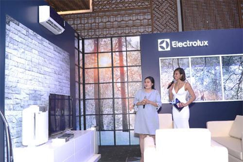 Electrolux tái hiện ngôi nhà Thụy Điển tại Việt Nam