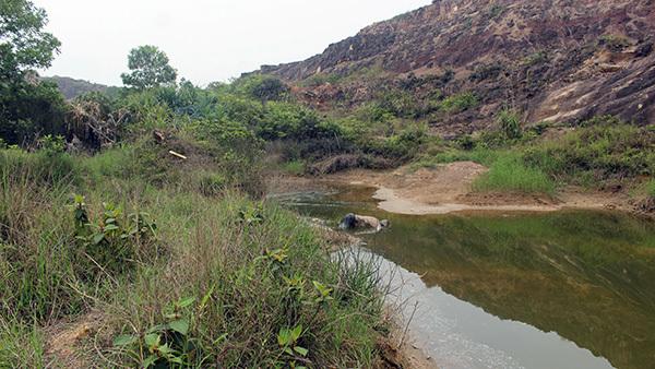 Quảng Ninh: Thi thể nam giới đang phân hủy nổi giữa hồ