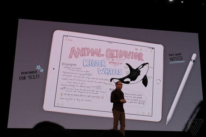 iPad mới giá 6,8 triệu của Apple có gì đặc biệt?