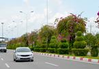 Công bố điều chỉnh quy hoạch xây dựng vùng TP.Hồ Chí Minh