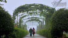 Những miền quê đẹp như tranh ở Hà Tĩnh