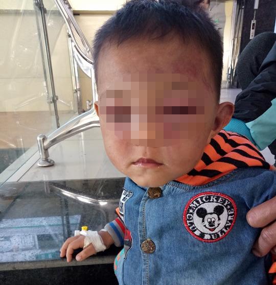 hành hung,Nghệ An,bạo lực gia đình