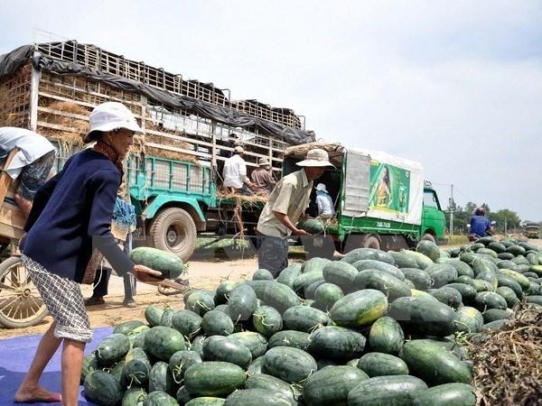 nông sản việt,nông sản việt xuất khẩu,xuất khẩu nông sản,xuất khẩu sang trung quốc,thị trường trung quốc