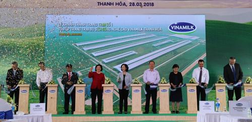Vinamilk vận hành trang trại bò sữa công nghệ cao 700 tỷ đồng