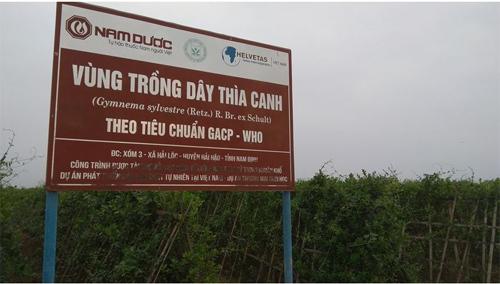 Công bố Quốc tế về 9 chất mới điều trị tiểu đường từ dây thìa canh Việt Nam