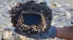 Hành trình kỳ diệu của chiếc máy ảnh giữa đại dương
