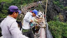 Tiến hành tháo dỡ công trình trái phép tại khu Tràng An cổ