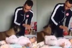 Chú chó hết mình bảo vệ em bé khi bị... bố đánh