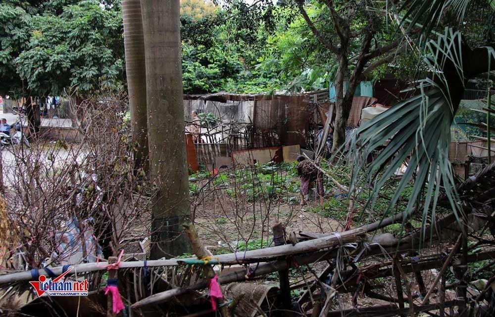 ô nhiễm,Hà Nội,bãi rác