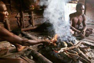 Hãng tin BBC dính bê bối dàn dựng về bộ lạc sống trên cây