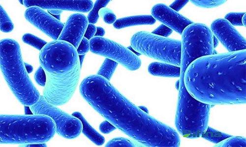 Cách dùng kháng sinh an toàn khi bị viêm đại tràng