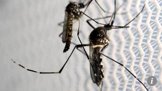 Trung Quốc dùng công nghệ quân sự đểbắt muỗi
