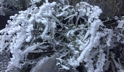 Fansipan băng tuyết
