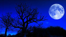 Hiện tượng nguyệt thực siêu trăng xanh hiếm gặp vừa qua là gì?