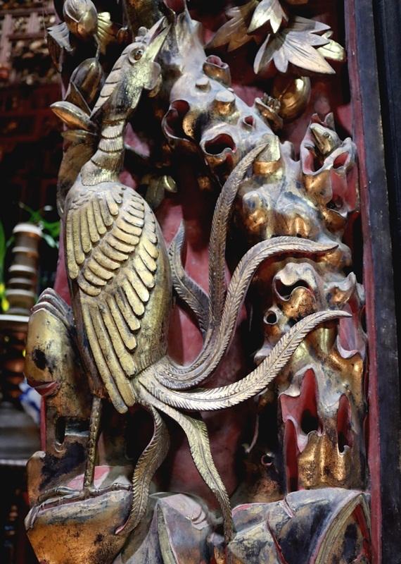 chim phuong dieu khac