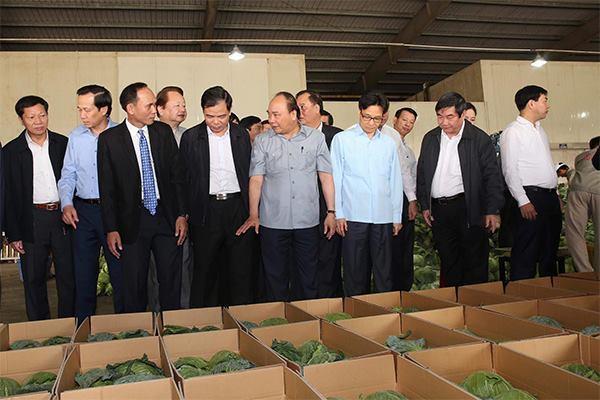 Thủ tướng: Trước khi gieo hạt phải tính bán cho ai