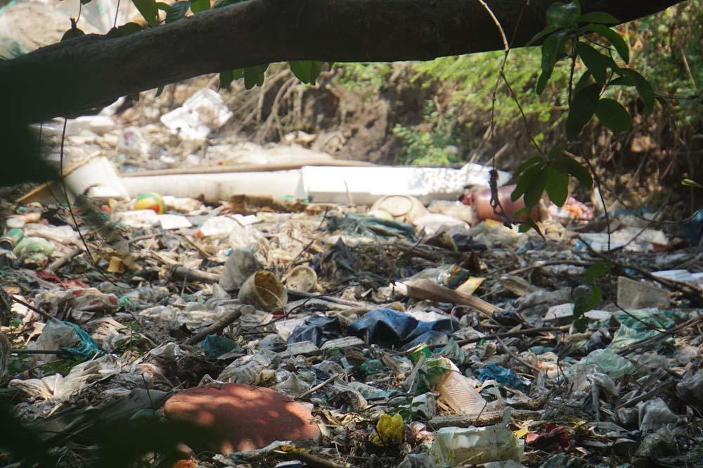 ô nhiễm môi trường,Sài Gòn,Tân Sơn Nhất,rác thải,sân bay Tân Sơn Nhất