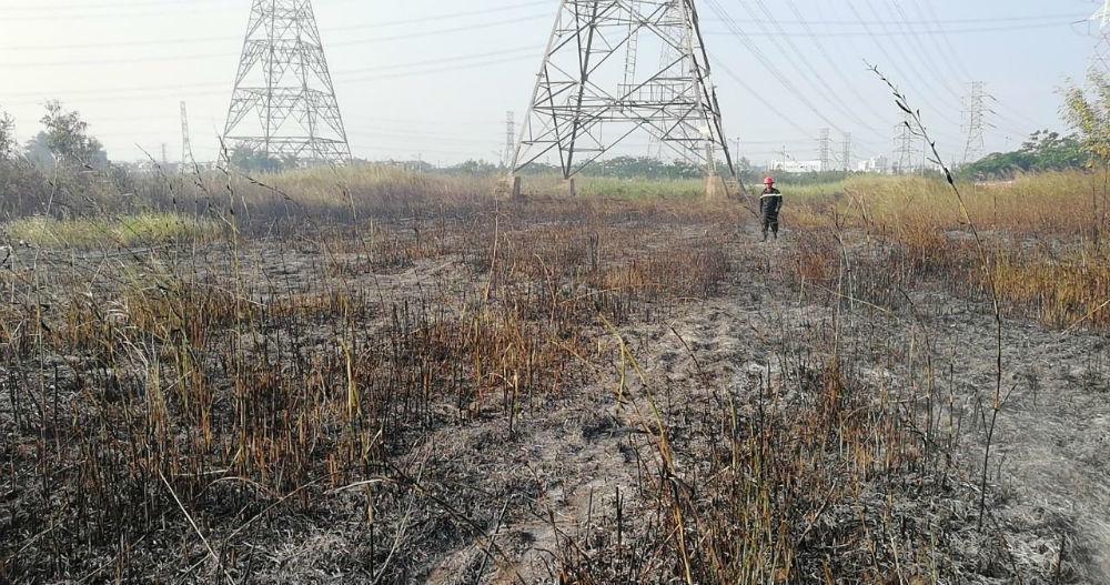 Cháy cỏ rộng ngàn mét uy hiếp đường dây điện 500 KV ở Sài Gòn