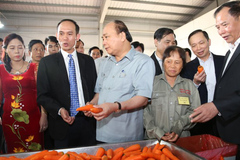 Sau gặp gỡ với Thủ tướng: Bộ ngành lập tức vào cuộc cùng nông dân