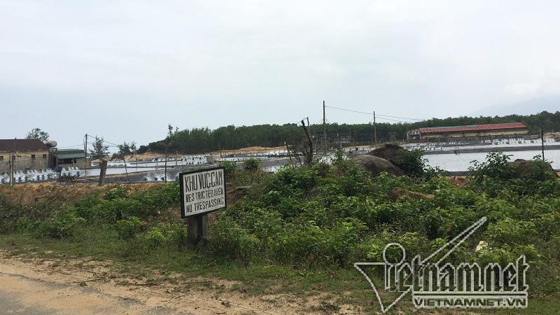 cảng Chân Mây,xả thải,ô nhiễm,ô nhiễm biển