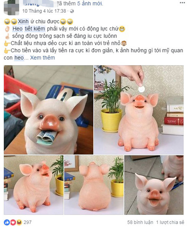 Loại lợn tiết kiện đang gây sốt trên thị trường