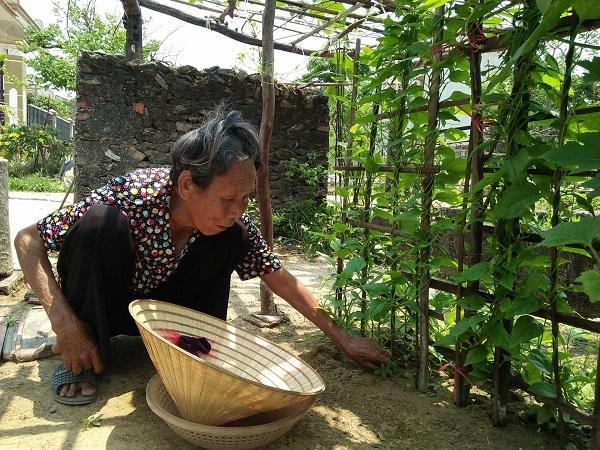 hoàn cảnh khó khăn,bệnh hiểm nghèo,bỏng nặng,cấp cứu,từ thiện vietnamnet