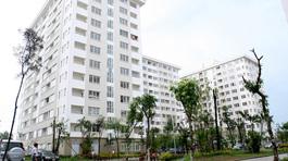 Đổ xô đi tìm căn hộ 700 triệu: Nhà rẻ thế có đặt mua luôn