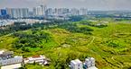 Thành ủy TP.HCM lên tiếng về việc bán đất công cho Quốc Cường Gia Lai