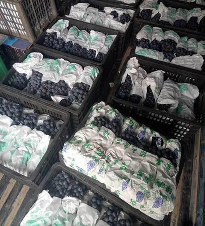 Bảy loại quả Trung Quốc bán tràn chợ Việt: Đẹp long lanh, rẻ như rau