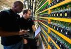 Dân đào Bitcoin đang lỗ vốn?