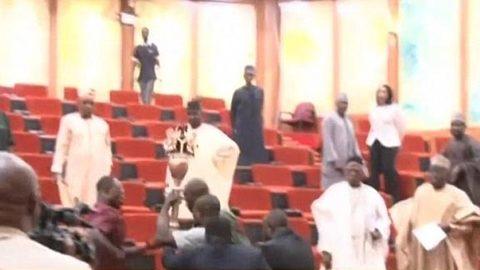 Đạo chích táo tợn cuỗm quyền trượng của Thượng viện Nigieria