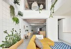 Trang trí nội thất nhà đẹp với những cây xanh sáng tạo