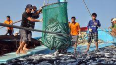 Trung Quốc cấm đánh bắt cá ở biển Đông: 'Không có giá trị'