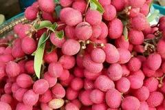 Quả rừng đỏ au: Món lạ dầm muối ớt lên cơn sốt quà vặt