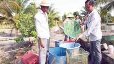 Bán 3 căn nhà để đi học nuôi cá