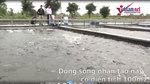 Chơi liều làm sông nhân tạo, thu tiền tỉ trong vài tháng