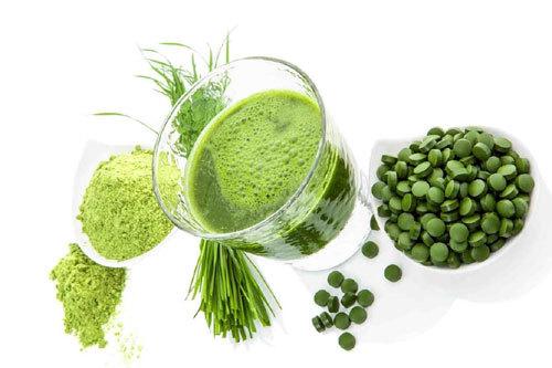 tăng cân,tảo mặt trời tăng cân,tảo spirulina,tăng cân tự nhiên,tảo mặt trời