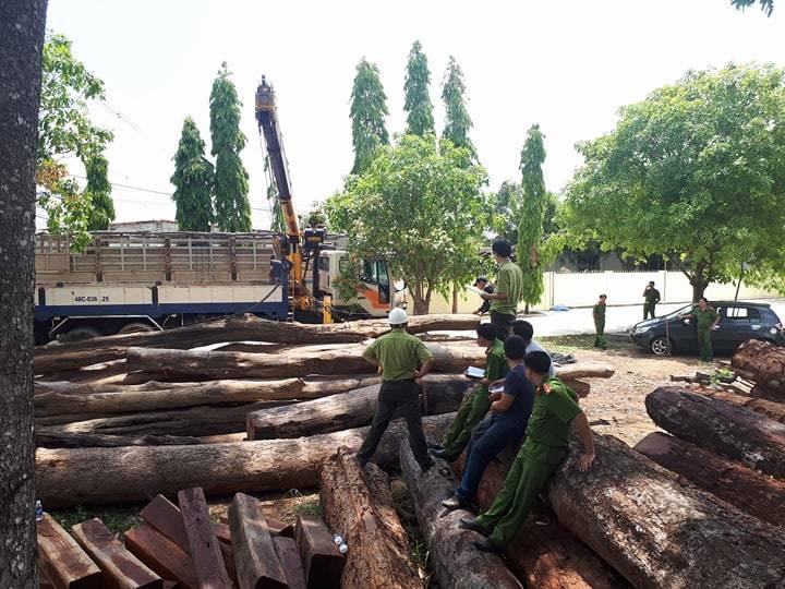 Gỗ lậu,Bộ Công an,VQG Yok Đôn,Đắk Lắk,phá rừng