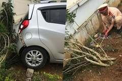 Nhiều vụ tai nạn giao thông trong trường học: Bộ Giáo dục siết công tác đảm bảo an toàn