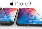 iPhone 9 có thêm lớp màn hình bí ẩn, thay thế 3D Touch